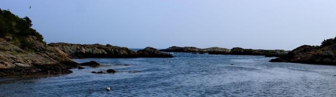 Newport beachs